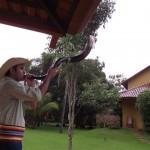 Merenda Pantaneira - Tour da Experiência