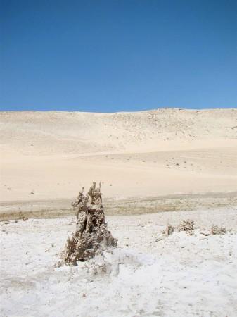Processo de petrificação das dunas em Tatajuba