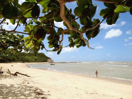 Tranquilidade, sombra e água fresca na Praia do Espelho - Trancoso Bahia