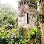 Parque Lage - Torre