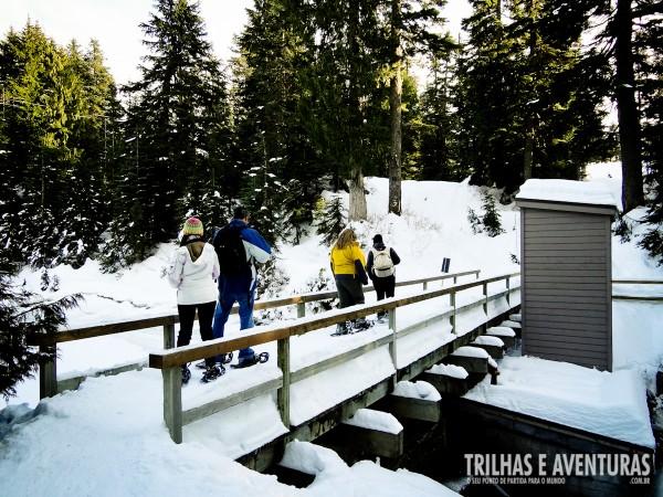 Atravessando uma ponte congelada