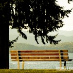 Já pensou sentar neste banco e curtir esta vista?