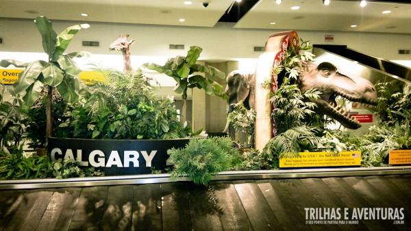 Os animais dão as boas vindas em Calgary