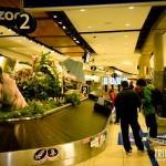 Calgary Zoo na esteira das malas do aeroporto