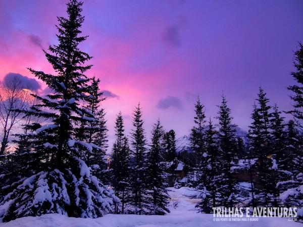 Amanhecer com diversas cores no céu. Digno de muitas fotos