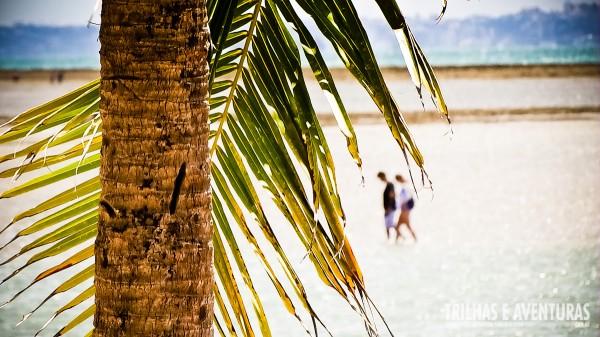 Caminhar na praia durante a maré baixa é um programa imperdível