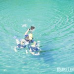 Mergulhe com peixes de até 2m, como o tranquilo pirarucú