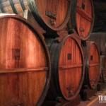 Enormes barris de vinhos são vistos durante o tour na Bodega el Esteco