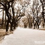 Plaza General San Martin - Buenos Aires, Argentina