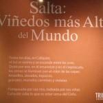 Vinhos de Salta - Museu da Vida e do Vinho em Cafayate, Argentina