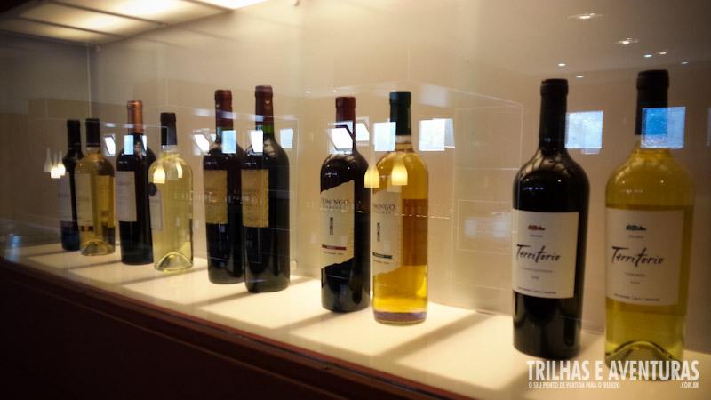 Garrafas em Exposição - Museu da Vida e do Vinho em Cafayate, Argentina