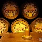 Barris de Vinho - Museu da Vida e do Vinho em Cafayate, Argentina