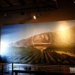 Painel de Salta - Museu da Vida e do Vinho em Cafayate, Argentina
