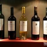 Garrafas de Vinho - Museu da Vida e do Vinho em Cafayate, Argentina
