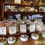 Degustação de queijos de cabra premiados - Posta de las Cabras