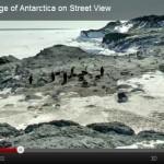 Rocha dos Pinguins-de-Adélia na Antártica