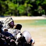 Os cantinhos da praia reservam fotos incríveis como esta