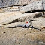 Esse enorme teiú se aproximou nas rochas e posou para fotos