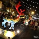Exposição de Renas, durante o Natal Luz de Gramado