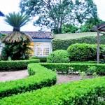 Amplos jardins para curtir a natureza