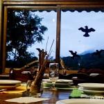 Restaurante com vista panorâmica integrada a natureza