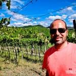 Um belo dia de sol para um tour de vinho