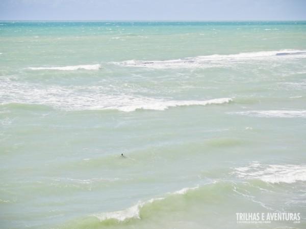Aquele ponto preto é uma das tartarugas que subiram para nossa alegria