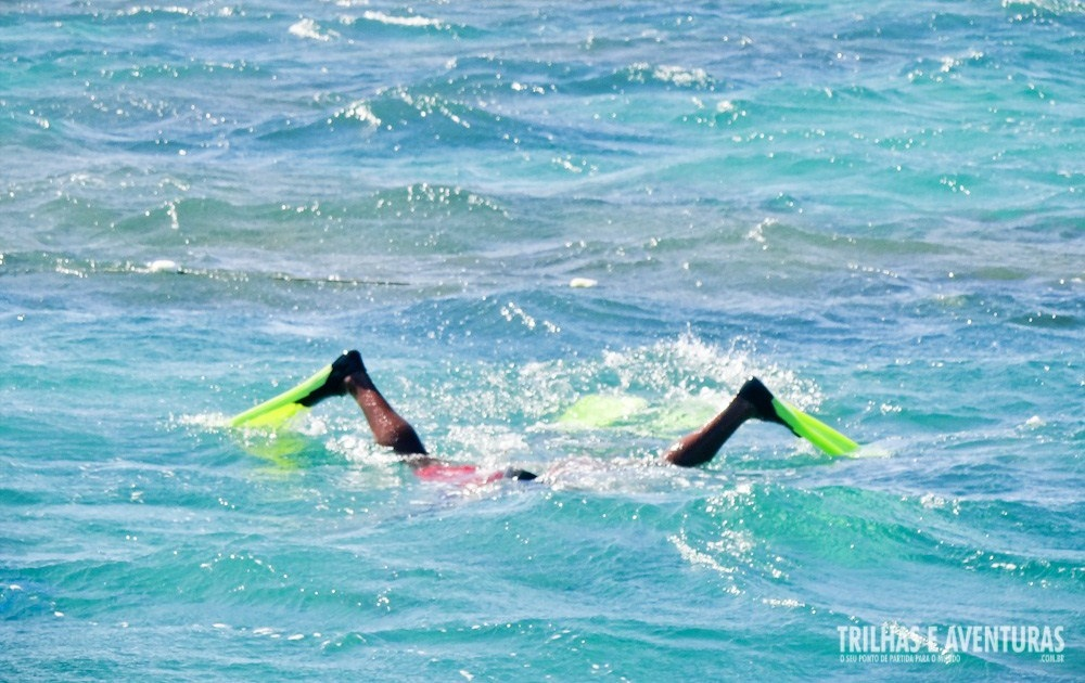 Diversão no mergulho dos parrachos de Maracajaú