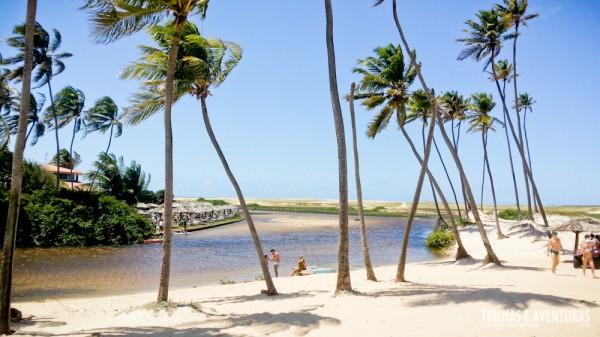 Coqueiros, praia e manguezal... tudo em um único cenário. Isso é Punaú!