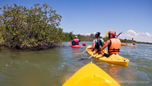 """Remando dentro das """"levadas"""" do manguezal na Lagoa Guaraíras"""
