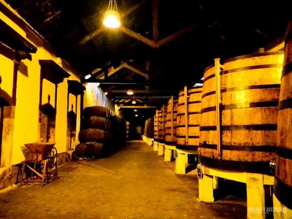 Enormes barris de vinho na Vinícola Ferreira