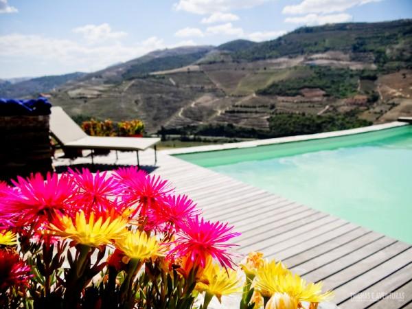 Flores na beira da piscina da Vinícola Quinta Nova