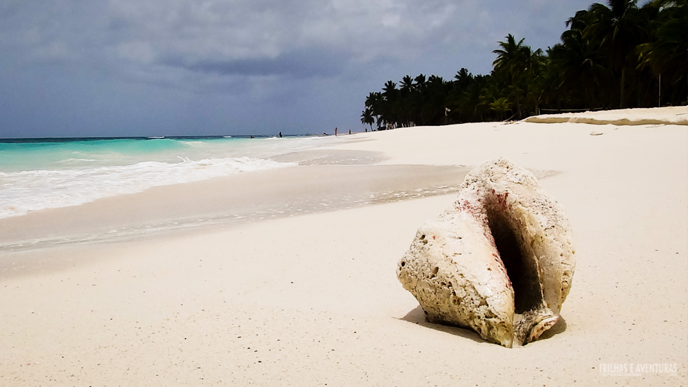 Ilha Saona - República Dominicana