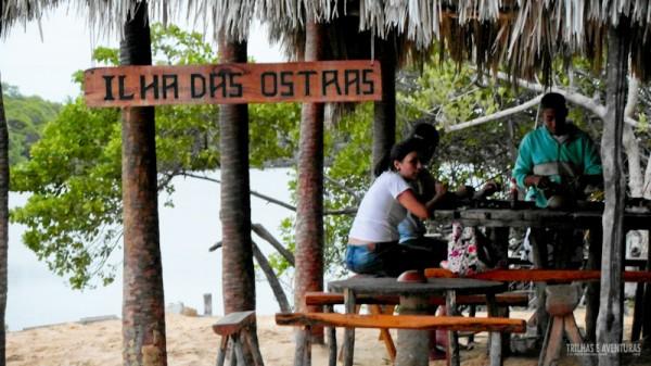 Impossível resistir a uma degustação na Ilha das Ostras