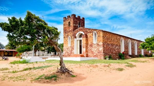 Árvore deitada em frente a Igreja Matriz em Jericoacoara