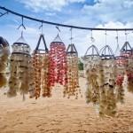 Artesanato de conchas escamas de peixes
