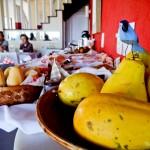 Café da manhã com frutas frescas e sucos naturais