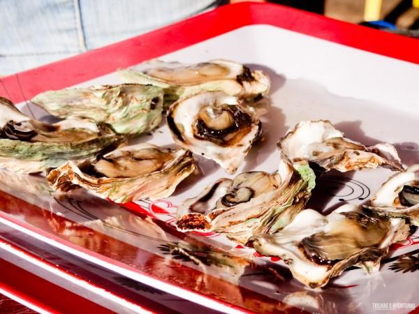 Degustação de ostras frescas na Cabana da Tânia que fica no meio do Rio do Inferno