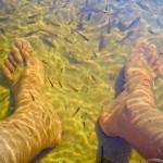 Massagem nos pés gratuita na praia de Massarandupió