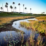 Um dos cenários mais lindos em Massarandupió é o rio por trás das dunas