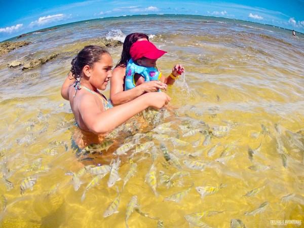As piscinas naturais são diversão garantida para as crianças