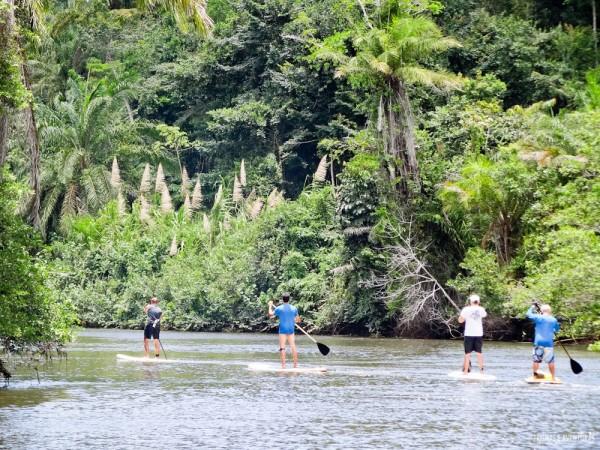 Belas paisagens durante o SUP no Rio de Contas em Itacaré