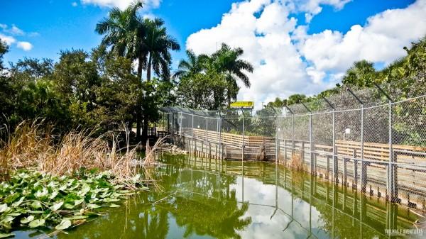 AEExperience-Fort-Lauderdale-3s-23