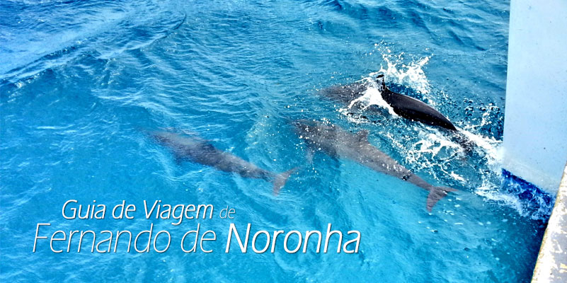 guia beach show noronha 2016 um mergulho na esmeralda do atlantico portuguese edition