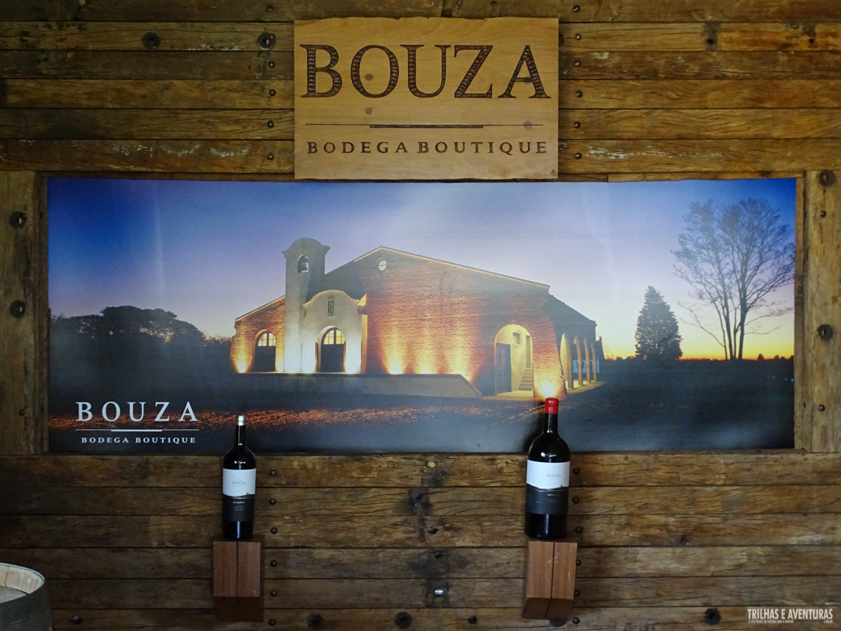 Bouza Bodega Boutique, vinícola orgânica em Montevidéu