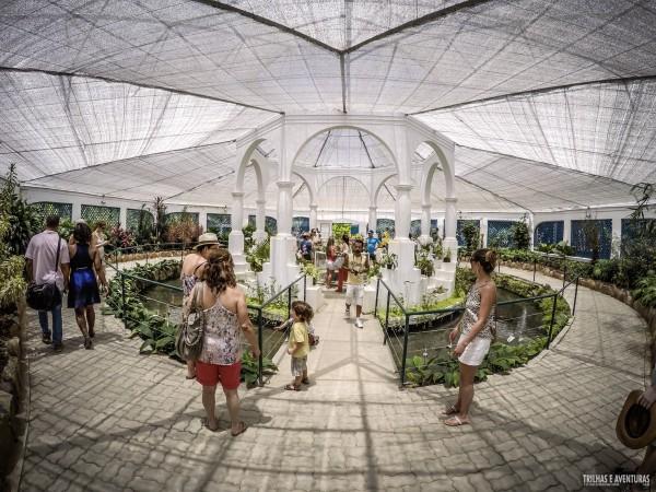 Orquidário do Jardim Botânico no Rio de Janeiro