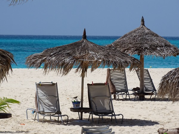 Manchebo Resort Eagle Beach Aruba-4
