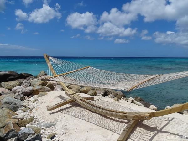 Renaissance Resort Oranjestad Aruba-10