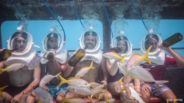 Sea Trek De Palm Island Aruba-2