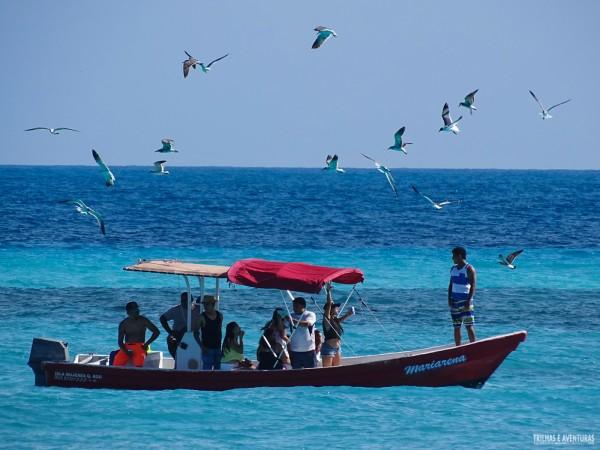 Não deixe de fazer também um passeio de barco em Isla Mujeres